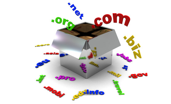 nombres dominio